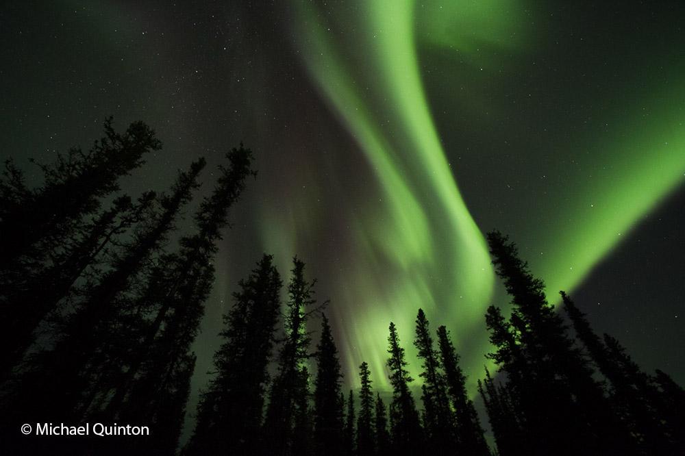 aurora borealis-15-50